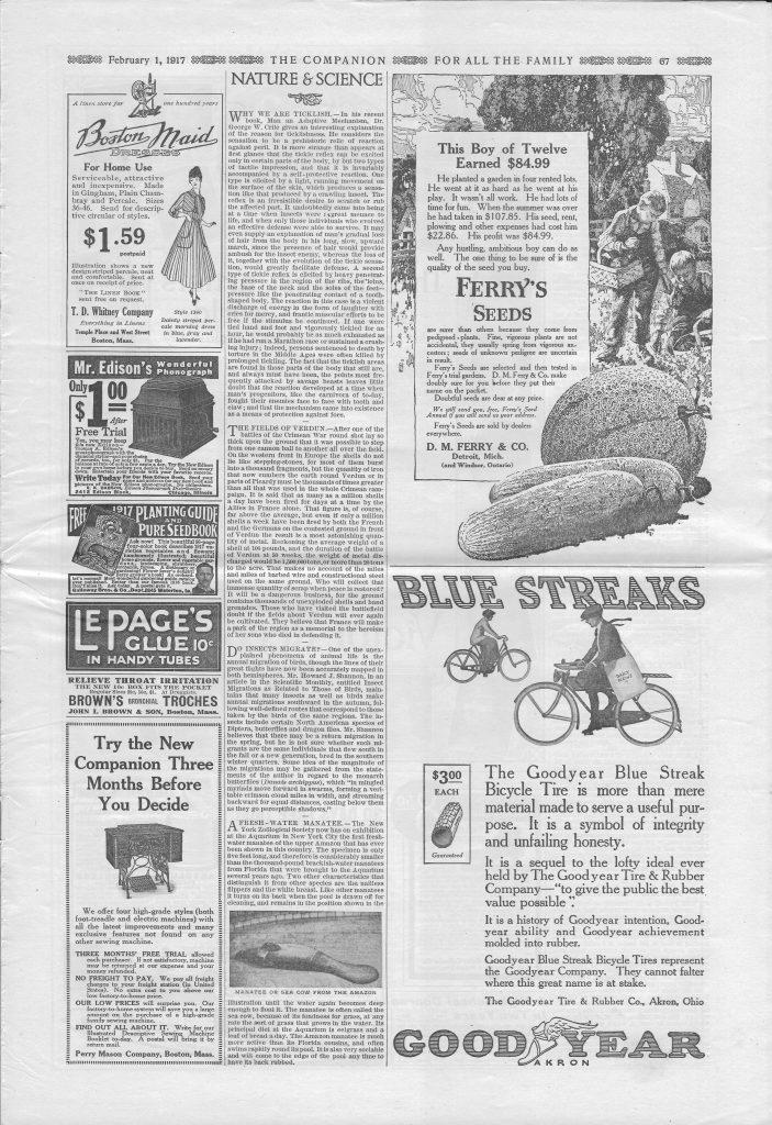 <em>The Youth's Companion</em> - February 1, 1917 - Page 67